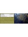 YiYa Jód & Szelén komplex – organikus (bio) barnamoszatból, szerves formában!